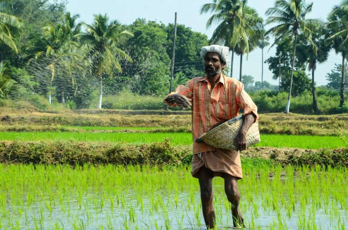 Agriculture loans not part of interest waiver scheme