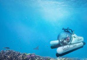 Пассажиром на подводной лодке: Uber запускает подводное такси