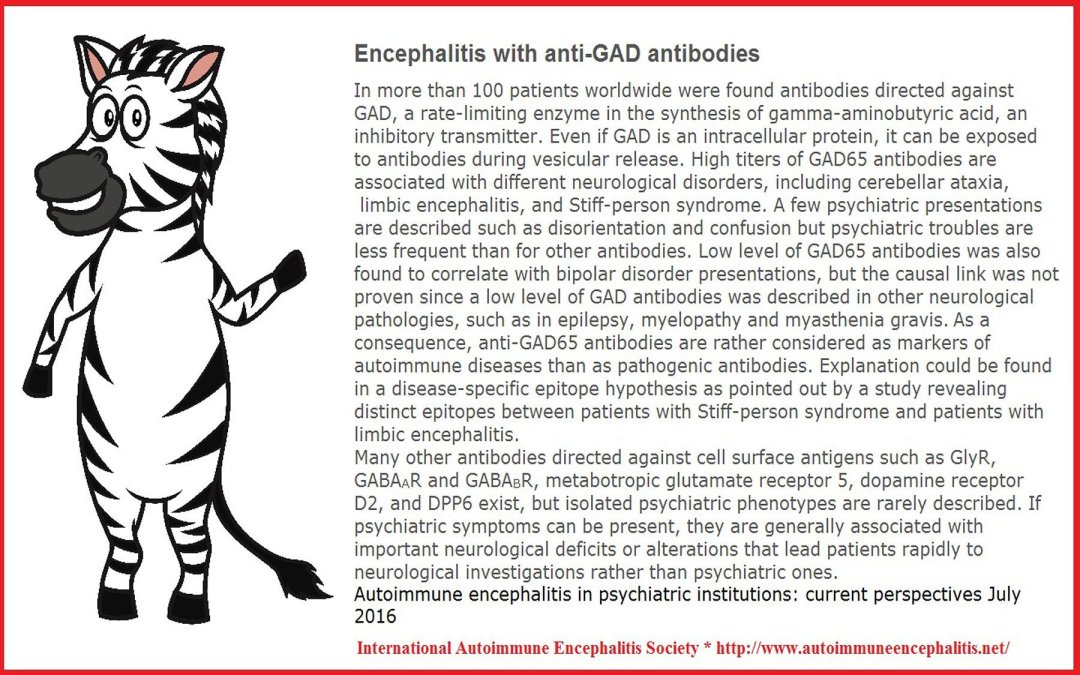 Anti-Gad syndromes