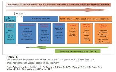 NMDA development
