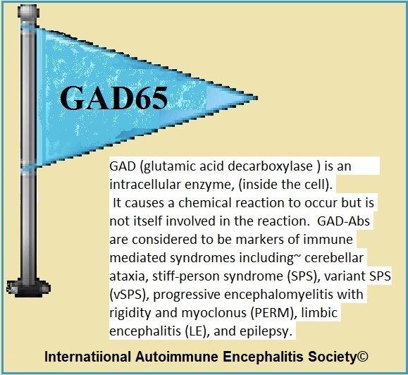 2 GAD65 antibody marker 1 - Memes About Autoimmune-Encephalitis