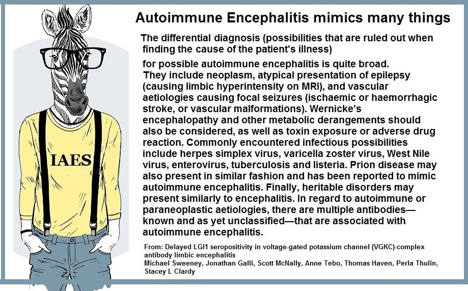 differential diagnosis - Memes About Autoimmune-Encephalitis