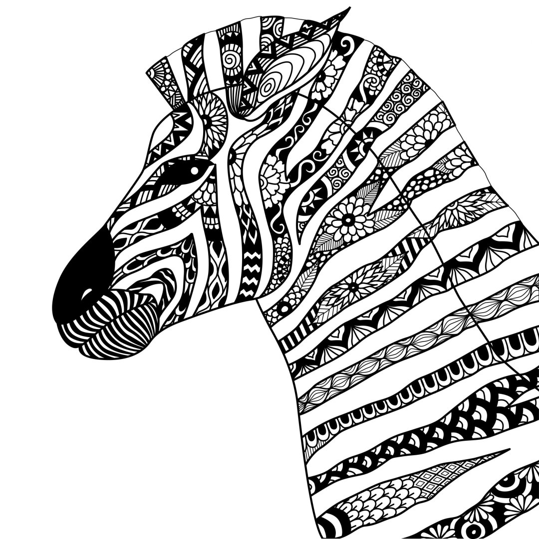 zebra 1 scaled - Cognitive Exercises for AE Patients