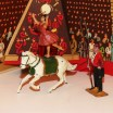 Timpo artistes de cirque : l'écuyère et le dompteur