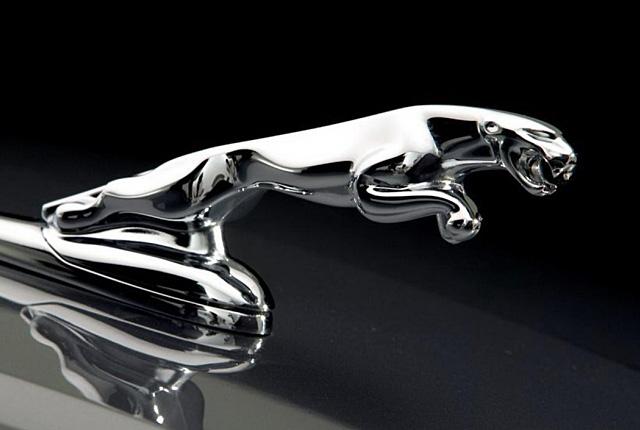 Jaguar embléma, logo