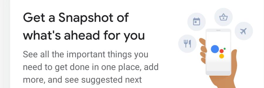 Screenshot of Google Assistant Snapshot