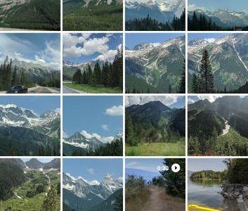 Screenshot of Google Photos App