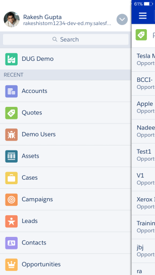 Access to Quotes in Salesforce1