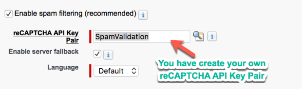reCAPTCHA API Key Pair