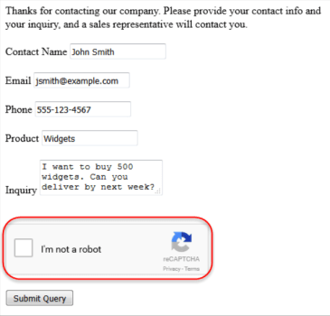Web-to-Lead: reCAPTCHA Web Form Validation