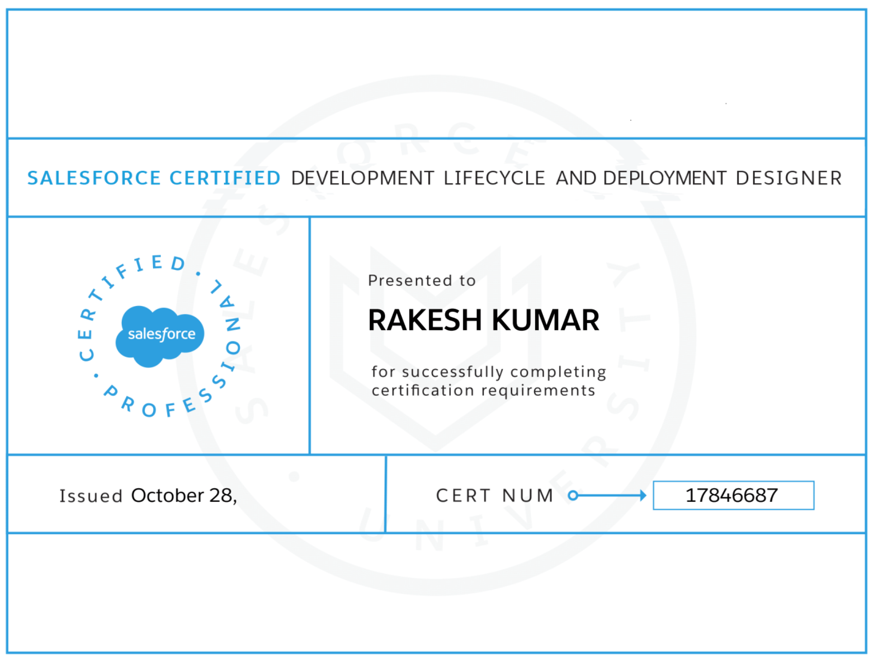 Acing Development Lifecycle and Deployment Designer Certification