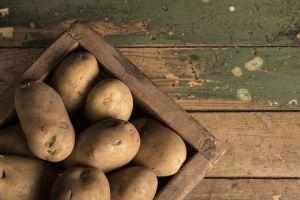 A Batata Yacon Serve para Diabetes e Ajuda A Emagrecer?