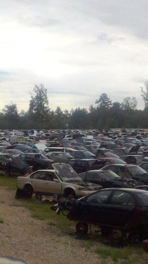 Photo of salvaged autos on yard