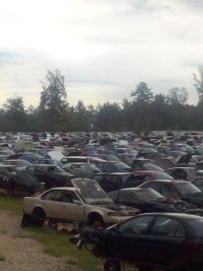 Photo of salvaged autos on yard