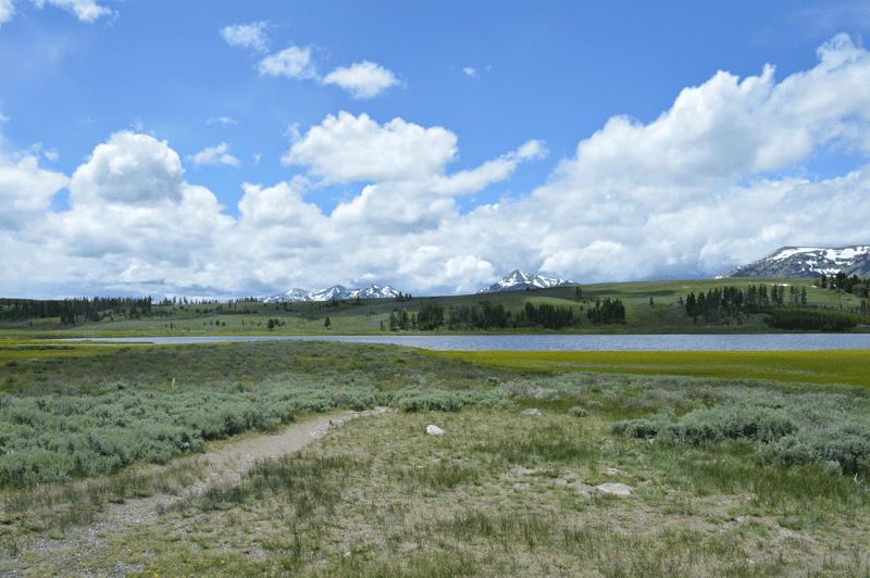 grannie geek, gallatin mountain range, yellowstone
