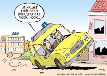rijles-cartoon