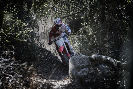 CRF450RX_Action 1_resize.jpg