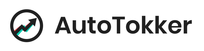 AutoTokker is the best TikTok automation service to help you get on the TikTok for you page.