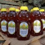 Autumn Harvest Orchard Honey bear bottle