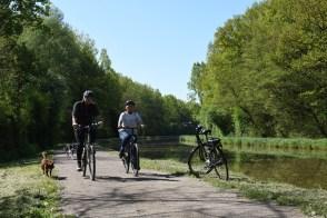 Des vélos traditionnels et électriques