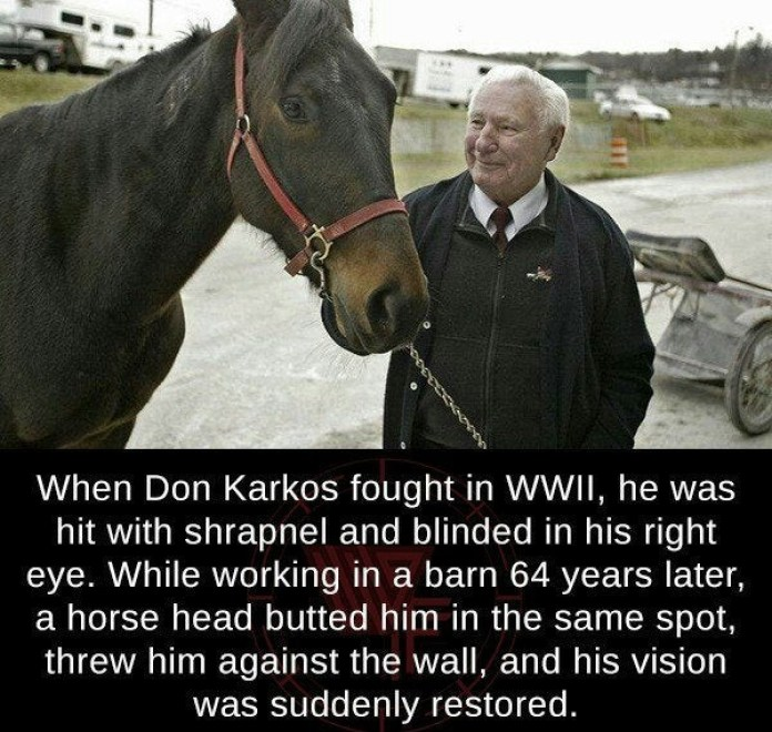 What A Great Horse!
