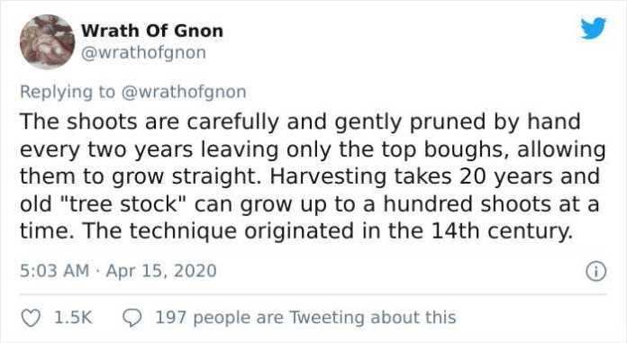 Wrath Of Gnon