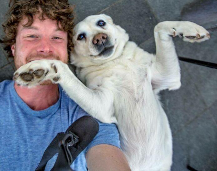 Animal Selfie