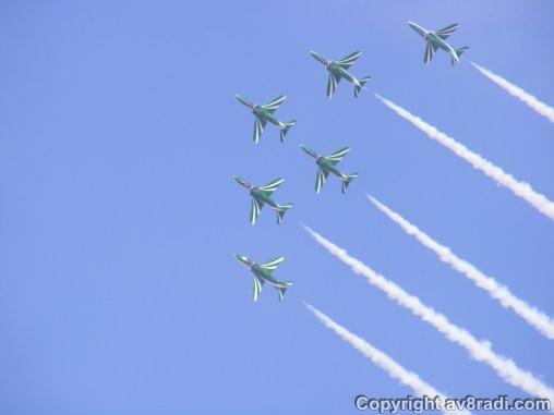 Saudi's team with their green Hawk's
