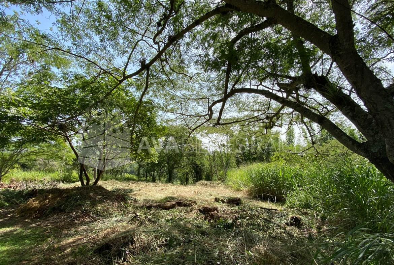 Hermoso terreno campestre en venta de 593 m2 a tan sólo 8 minutos de Xalapa.