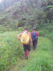 Plateau Taravao (8)