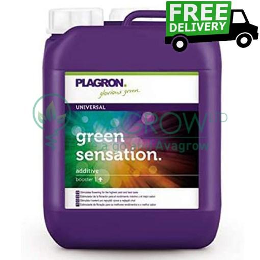 Green Sensation 5L FD