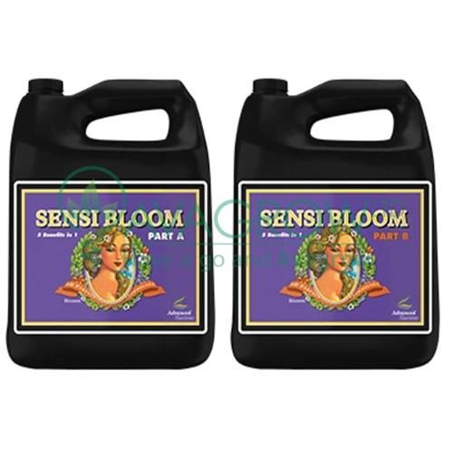 Sensi Bloom 4L