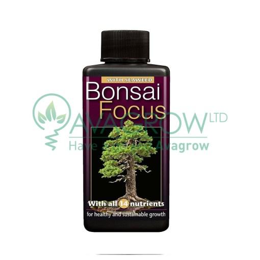 Bonsai Focus 100 ML