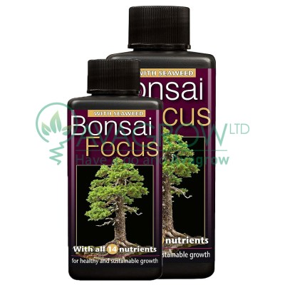 Bonsai Focus family