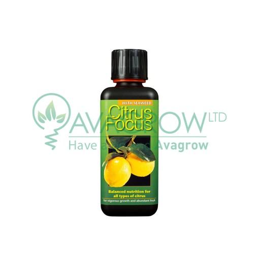 Citrus Focus 100ML