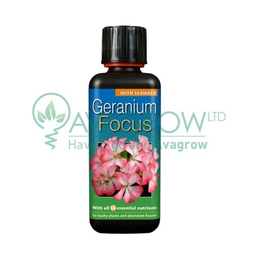 Geranium Focus 300ML