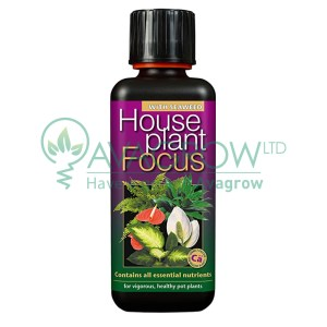 House Plant Focus 300ML