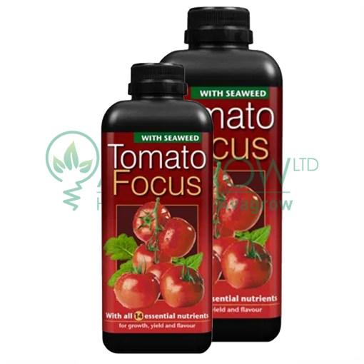 Tomato Focus Family