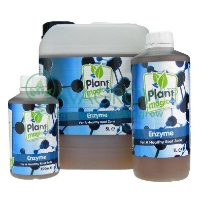 Plant Magic Enzyme Family