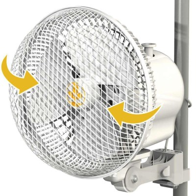 Secret Jardin 20w Oscillating Monkey Fan