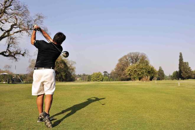 resized_resized_golf (3)
