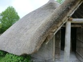 The newly rebuilt Iron Age roundhouse at the ATC