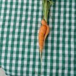 Salsa dancing carrots – only from Avalon Farms at Poplar Head farmers market