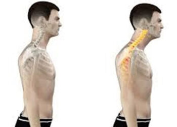 The Posture Pain Connection
