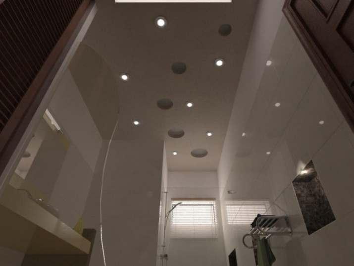 Pakistan Bathroom Ceiling Design
