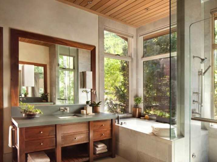 Eagle's Nest Rustic Bathroom Idea