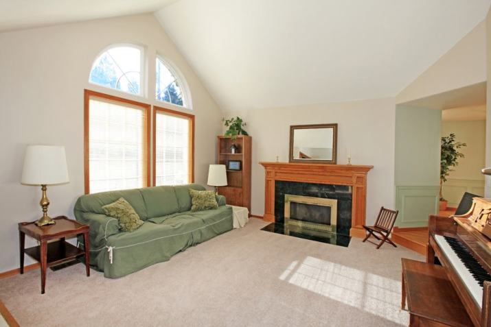 Centered-Style Large Living Room