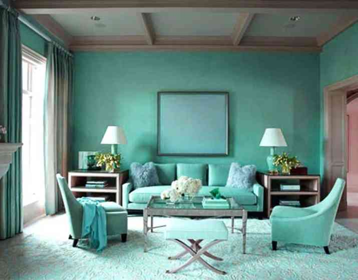 Brilliant Brown and Turquoise Living Room
