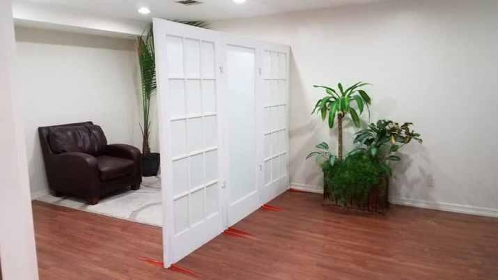 Door as Room Divider