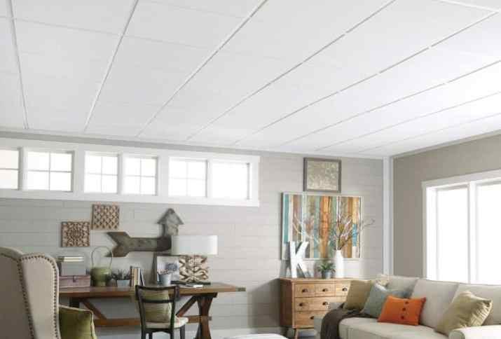 modern natural Alternative Basement Ceiling Ideas